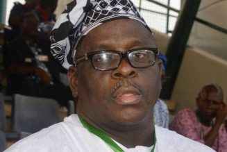 Court restrains Nigerian government from extraditing Senator Kashamu