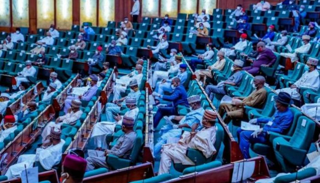 House of Reps queries health minister on whereabouts of Chinese doctors