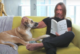 Iggy Pop Reads a Bedtime Story About His Beloved His Dog