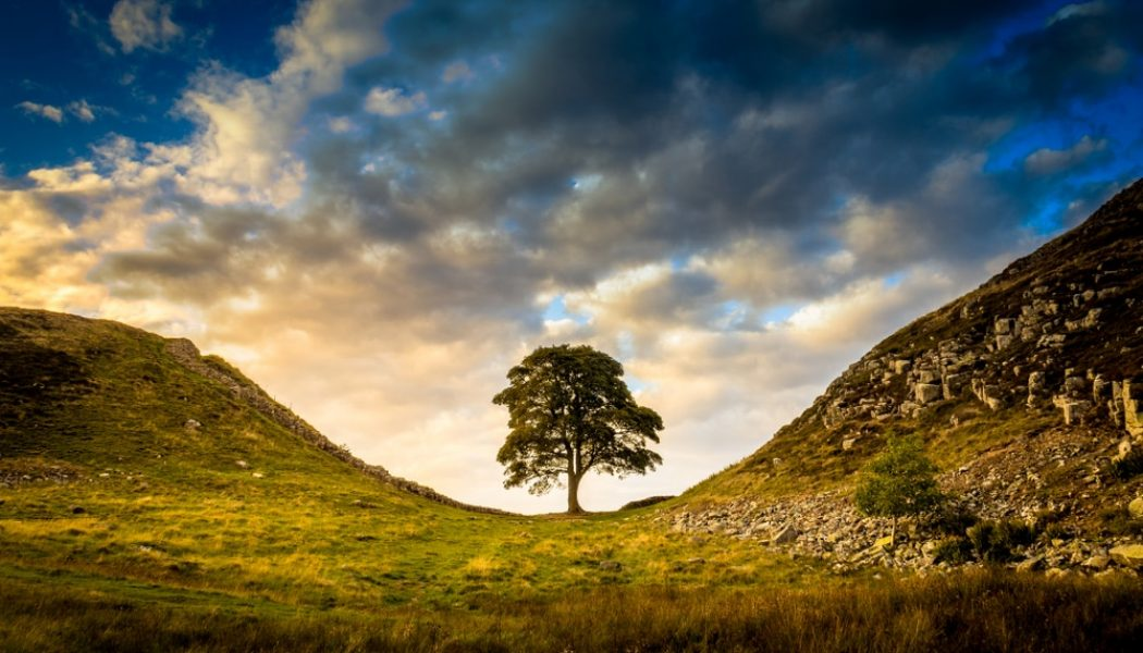 12 best hikes in Northumberland National Park