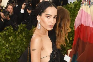 30 Zoë Kravitz Outfits That Are Worth Looking Back At