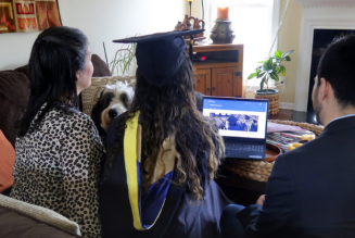 5 Things to Consider When Planning a Virtual Graduation