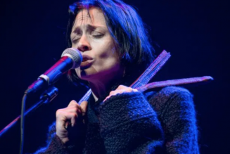 Fiona Apple to Donate Two Years' Worth of Song Royalties to Charity
