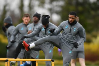 'It's the type of injury that worries me' – Former star reacts to Tottenham ace's injury
