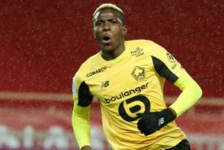 Victor Osimhen voted best African player in Ligue 1