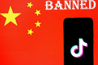 India Bans TikTok and Other Chinese Apps Amid Border Tensions