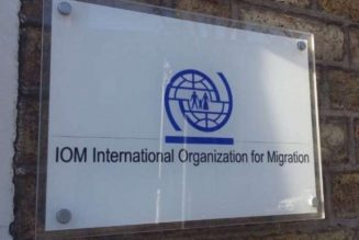 IOM: More than 240 illegal immigrants rescued off Libyan coast