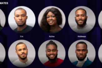 Meet Big Brother Naija Lockdown Season 5 housemates