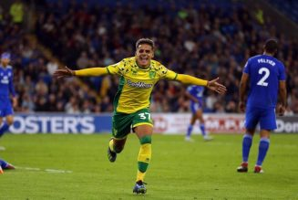 Report: Wolves want Norwich City player, £20m transfer fee