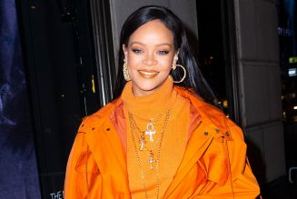 Rihanna Wished Megan Thee Stallion a 'Speedy Recovery' With Flowers Following Shooting