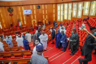 Senate demands review of Power Sector Reform Act