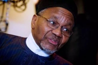 2023: Arewa youths reject Mamman Daura's call to jettison zoning