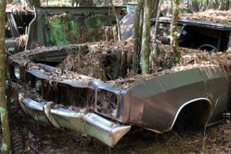 Old Car City U.S.A. Is Part Graveyard, Part Playground for Fans of Abandoned Classic Cars