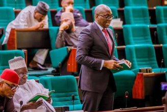 Rep Elumelu: Opposition lawmakers leading anti-corruption investigations