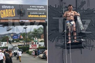 Steve-O Duct-Tapes Himself to Billboard to Promote New Special Gnarly