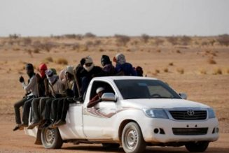 83 stranded migrants rescued in Sahara desert