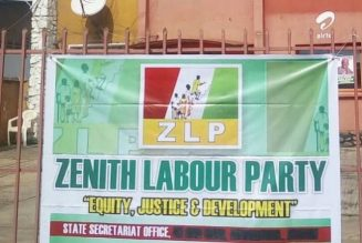 Enugu Assembly by-election: Casmir Nnadi emerges ZLP candidate