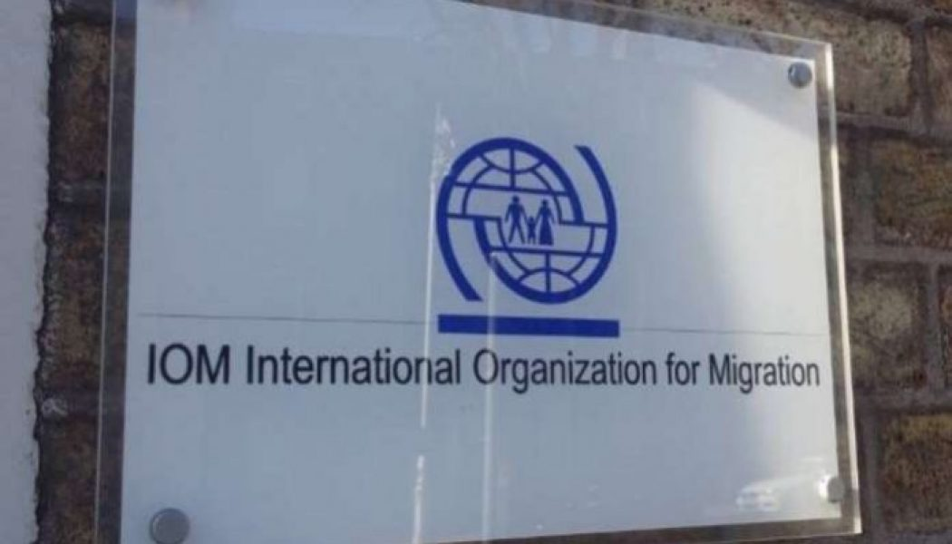 IOM: Social media pushing youths out of Nigeria