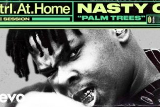 Nasty C – Palm Trees (Live Session) [VIDEO]