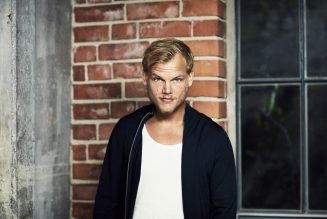 What's Your Favorite Avicii Song of All Time? Vote!