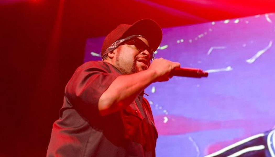Ice Cube Clarifies Why He Met With President Donald Trump