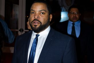 Rep. Cedric Richmond Says Biden Campaign Never Told Ice Cube To Hold On Until After Election