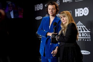 Stevie Nicks Says Harry Styles 'Is Definitely in the Running' for Mini-Series on 'Rhiannon' Folklore