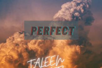 Taleen Beatz – Perfect