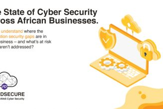 The State of Cybersecurity in Africa