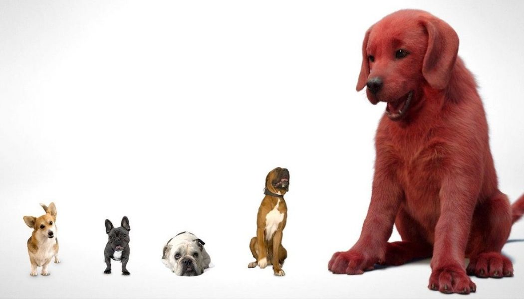 In First Look, Live Action Clifford the Big Red Dog Also Big Red Stuff of Nightmares
