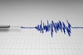 Polygraph lie detector will help curb crime in Nigeria –expert