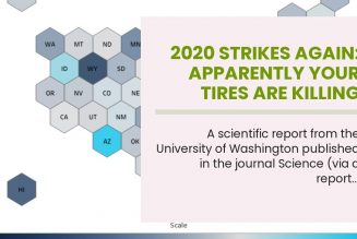 2020 Strikes Again: Apparently Your Tires Are Killing Salmon