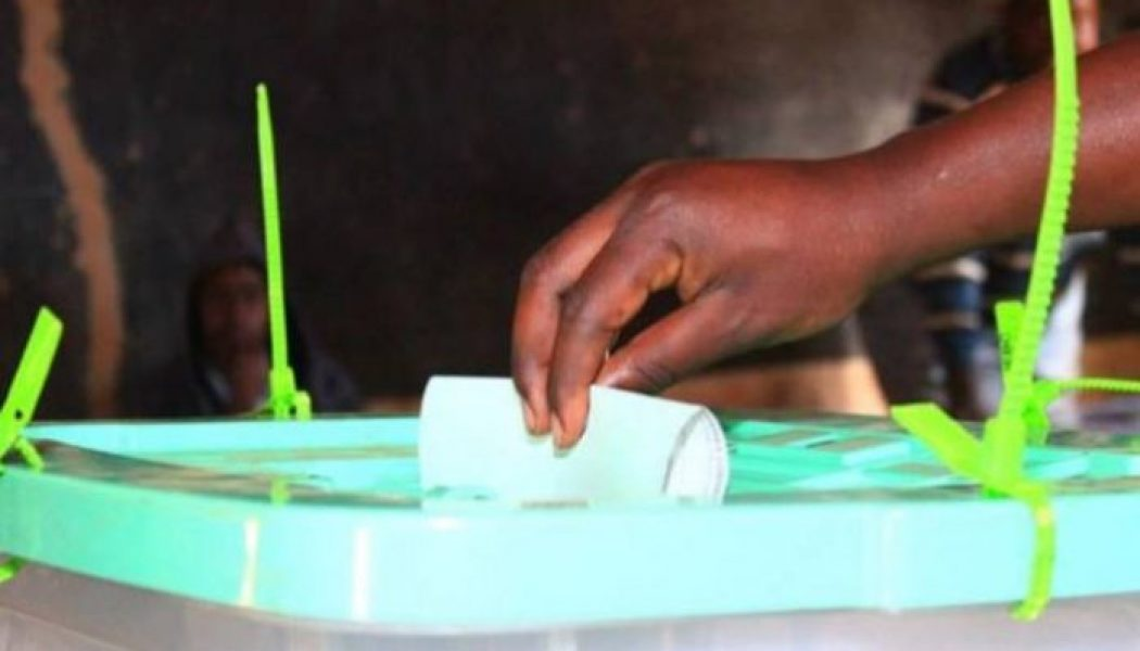 Borno holds bye-election for state assembly
