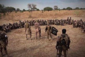 Ever-present Boko Haram threat casts shadow in Niger