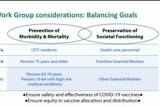 Frontline essential workers and the elderly next in line for COVID-19 vaccinations in US