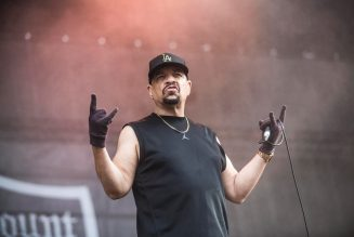 Ice-T Revealed as the Disco Ball on 'Masked Dancer' Premiere