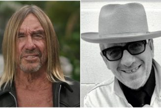 """Iggy Pop Shares French Language Cover of Elvis Costello's """"No Flag"""": Stream"""