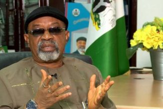 Senator Ngige: Ohanaeze electoral committee filled with PDP members
