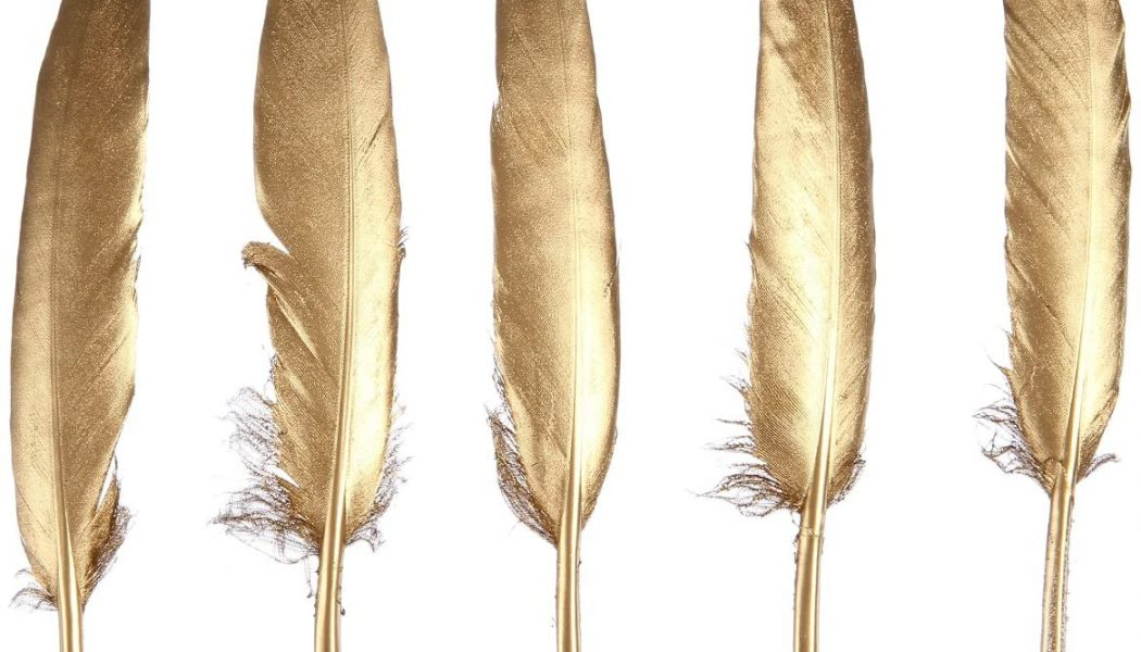 Feather Pieces!