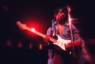 Jimi Hendrix's Brother, Niece Found in Contempt of Court for Violating Trademarks