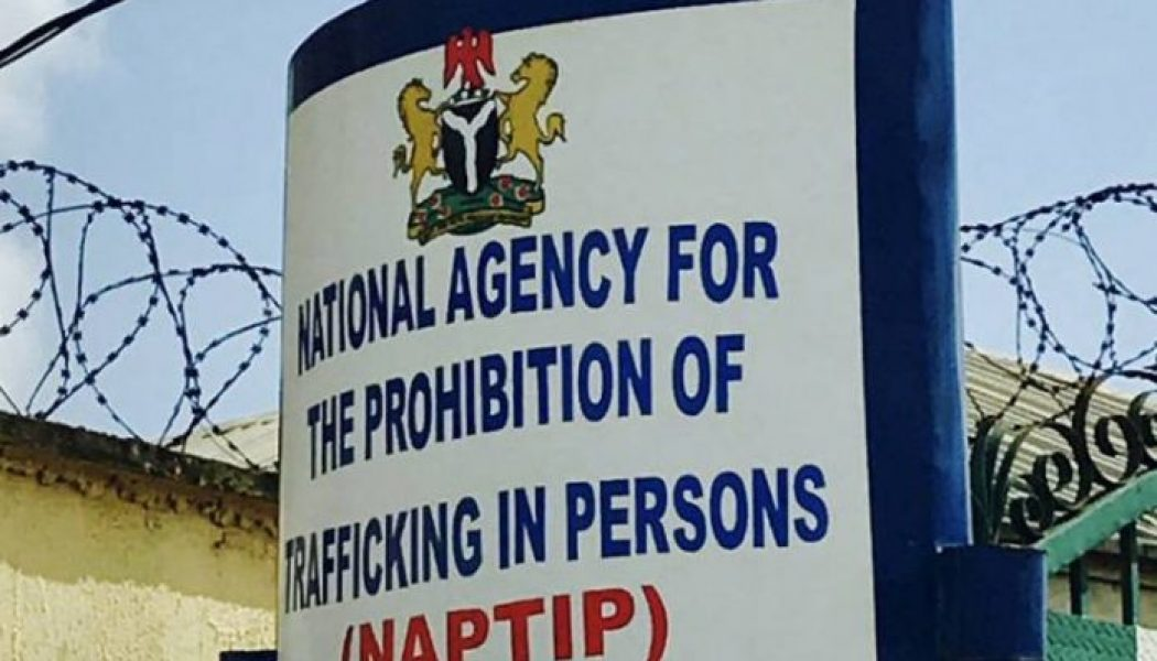 Minister tasks NAPTIP on domestication of trafficking act