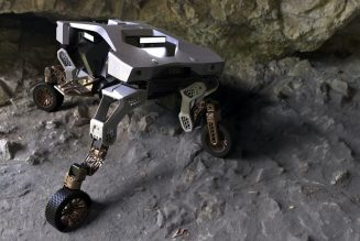 Hyundai TIGER X-1 UMV Is the Ultimate Walking, Wheeled Delivery Drone