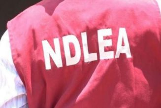 NDLEA intercepts container containing two million capsules of Tramadol in Apapa port