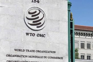 WTO fixes date to announce next director-general