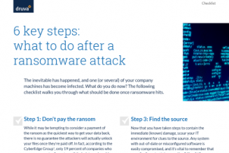 5 Things to Do After a Ransomware Attack