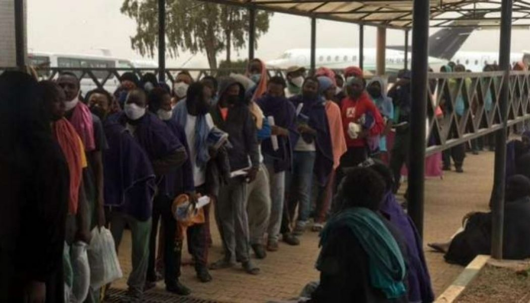 Another batch of 255 Nigerians stranded in Saudi Arabia arrive Abuja