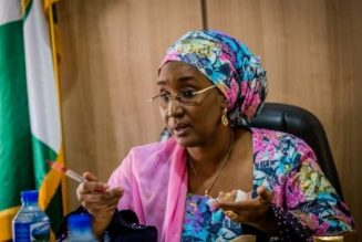 Nigerian government's special cash grant for rural women launched in Yobe