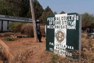 Official: 39 students missing from forestry mechanization college