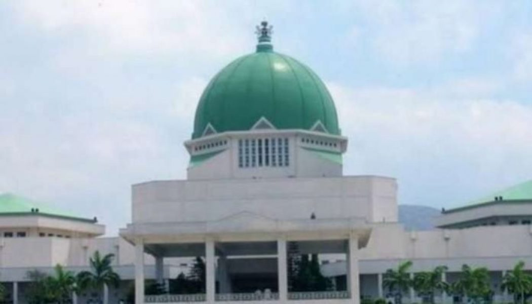 National Assembly legislative aides protest non-payment of arrears