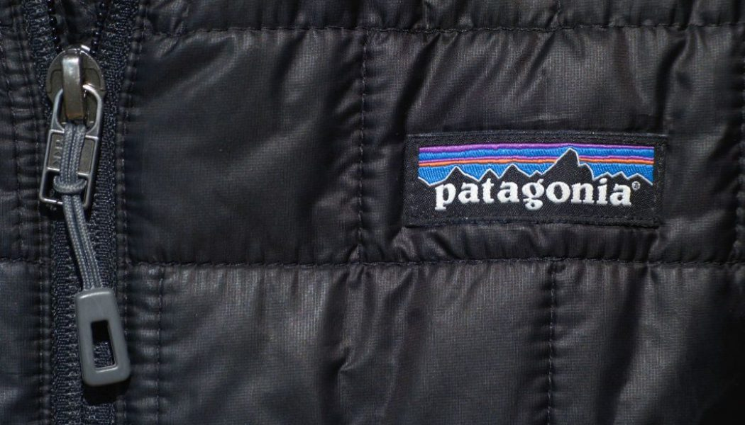 Patagonia Is Donating $1 Million To Fight Georgia's Voter Suppression Law